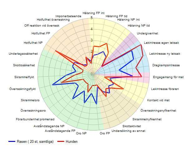 BPH Diagram